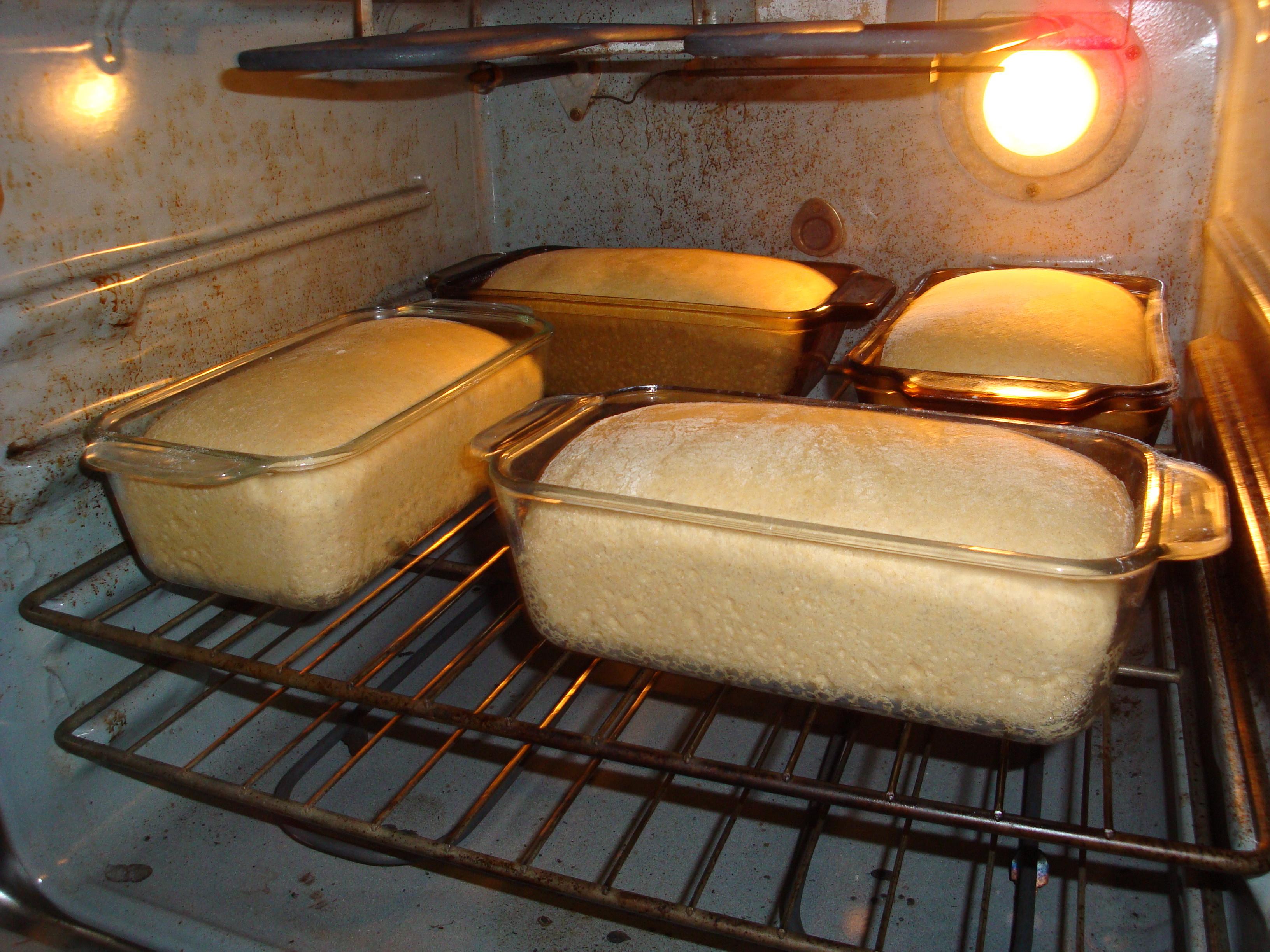 cuocere il pane