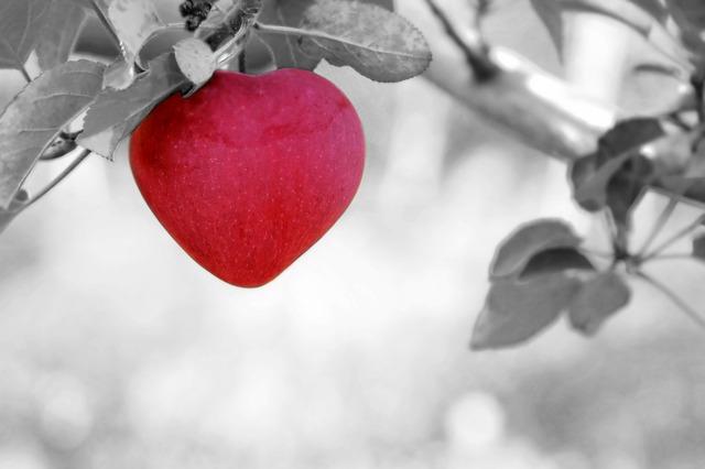 cuore pistacchi
