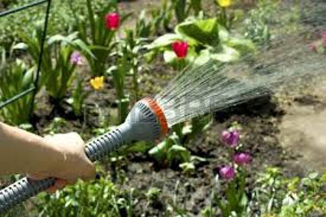 cura giardino