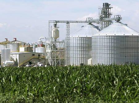energia dai rifiuti organici e biomasse