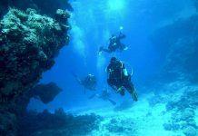 Tutela ambientale: aree marine protette