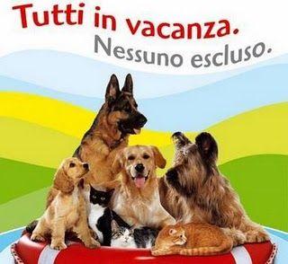 Animali: cani e gatti in vacanza sono 800mila - Ecoo.it