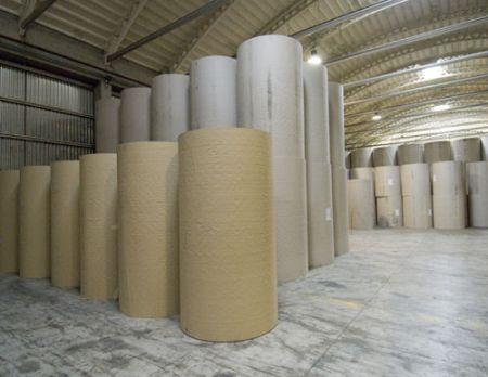 carta riciclata per il Comune di Cesena