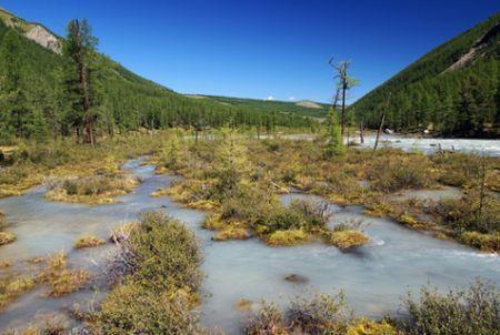 Biocarburanti, nuovo impianto russo in Siberia