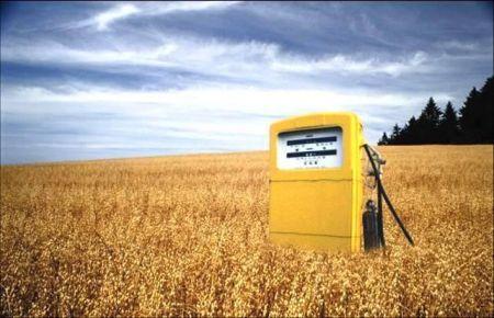Biocarburanti, nuove risorse per la ricerca americana
