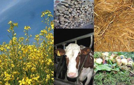 energie rinnovabili umbria agroenergie