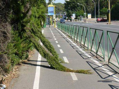 mobilita sostenibile italia piste ciclabili