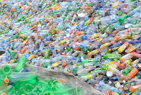 riciclaggio plastica cane