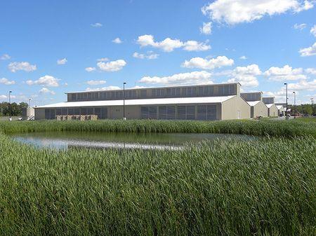 sviluppo sostenibile yahoo data center ecologico