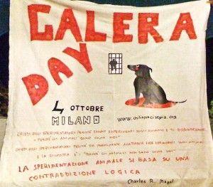 galera day