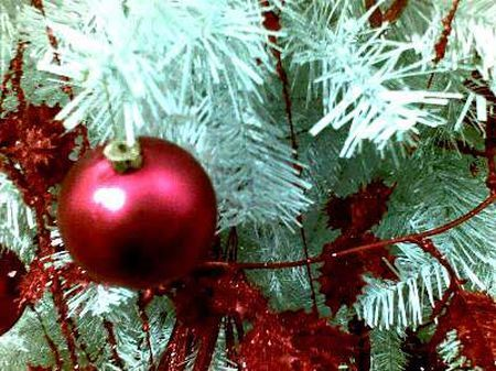 decorazioni green natale 2010 coco christmas legambiente