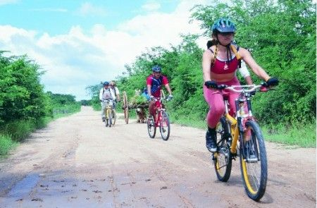 ecoturismo road to wellness