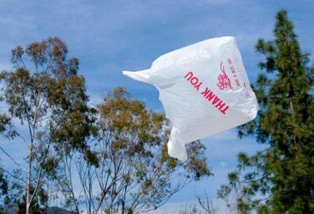 inquinamento ambientale vota il sacco buste plastica