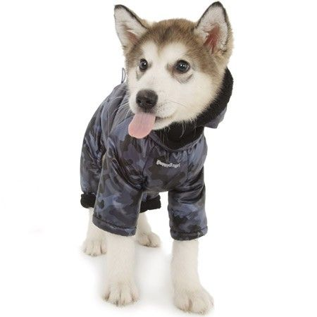 animali proteggere freddo