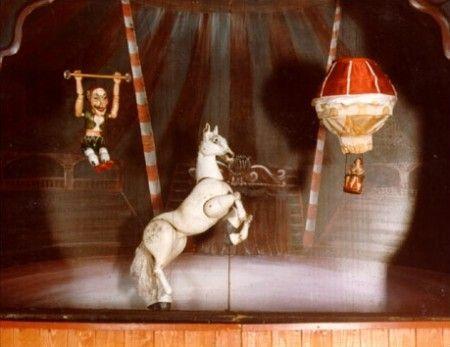 lav petizione contro circo animali