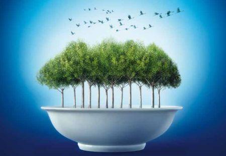 alimentazione sostenibile 2050