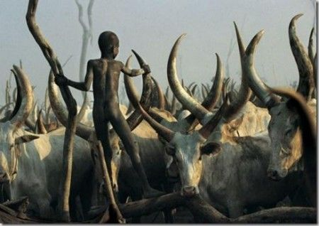 animali sudan
