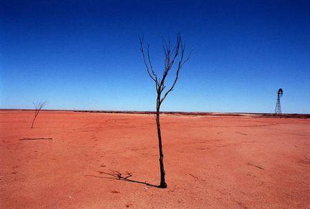 riscaldamento globale 2010 anno piu caldo