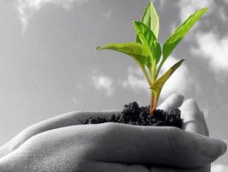 sviluppo sostenibile geneticamente biotecnologie
