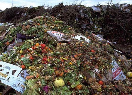 alimentazione sostenibile frigo sprechi alimentari