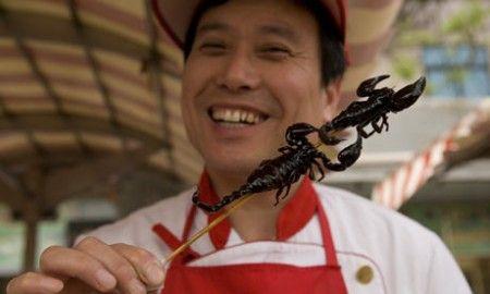 alimentazione sana insetti