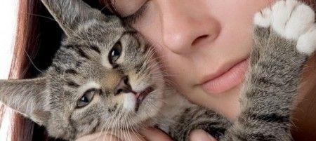 gatti donne