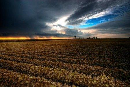 mutamenti climatici ambientali