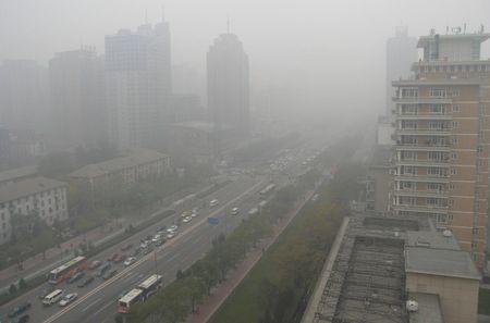 smog tasse auto
