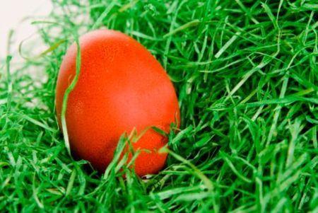 pasqua 2011 idee festa ecosostenibile