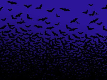 protezione animali pericolo estinzione pipistrelli