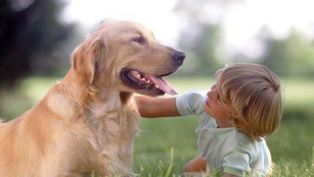 animali bambini funzionamento pet therapy