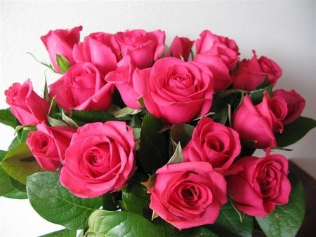 festa della mamma rose equosolidali