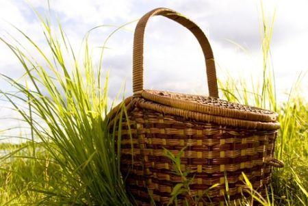 impatto ambientale picnic ecosostenibile