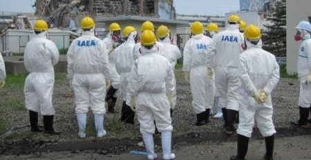 fukushima plutonio