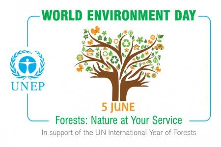 giornata mondiale ambiente 2011