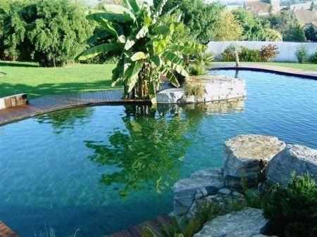 cloro piscina depurazione acqua