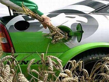 inquinamento atmosferico biocarburanti agricoltura biologica