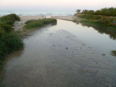 mare sardegna inquinamento microbiologico
