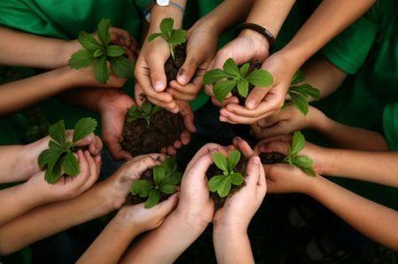 sviluppo sostenibile corriere it lifegate