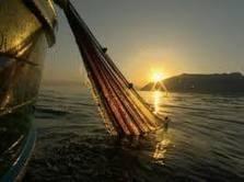 fermo pesca mare adriatico