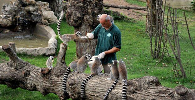 parco_faunistico_specie_animali