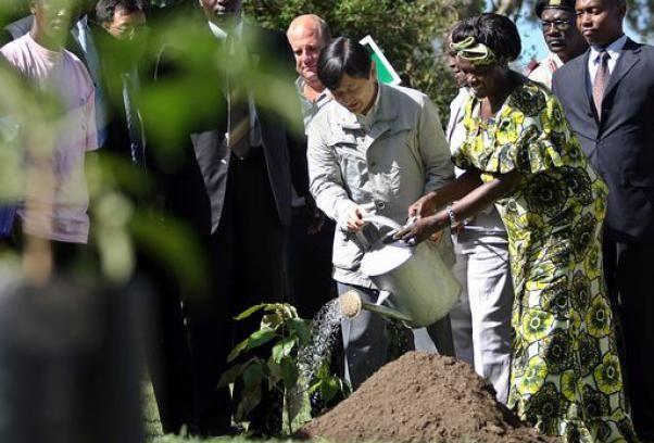 tutela_ambiente_taglio_alberi_Wangari_Maathai