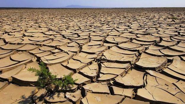 cambiamenti_climatici_terreni_agricoli_desertificazione