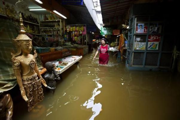 disastro_ambientale_thailandia_fuga_animali_pericolosi