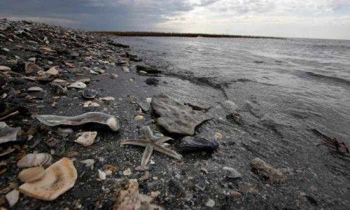 inquinamento_mare_mediterraneo_oro_nero
