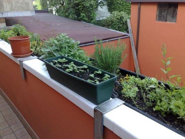 orto fai da te balcone casa esposizione solare