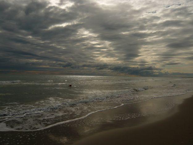 petrolio mare nuova zelanda
