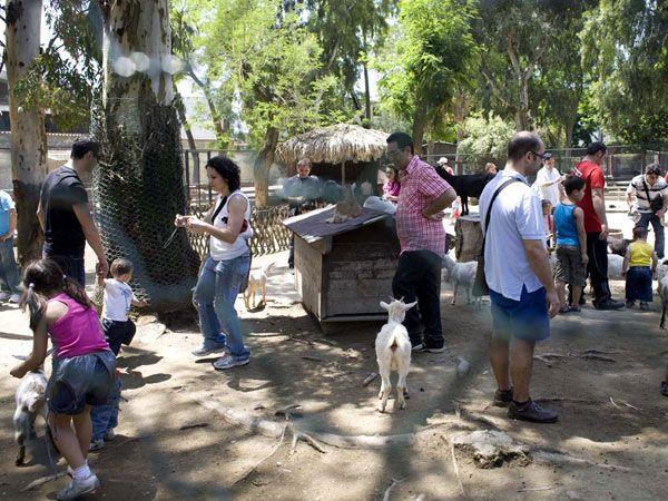 zoo_napoli_protezione_animali