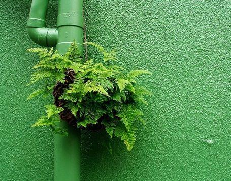 aree_verdi_verde_pubblico