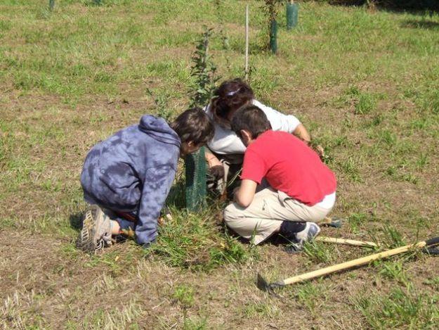 orto in condotta programma educativo ambientale slow food scuole